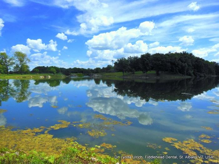 Image: Hickory Lake on Sugar Creek Farm, Atlanta Illinois USA