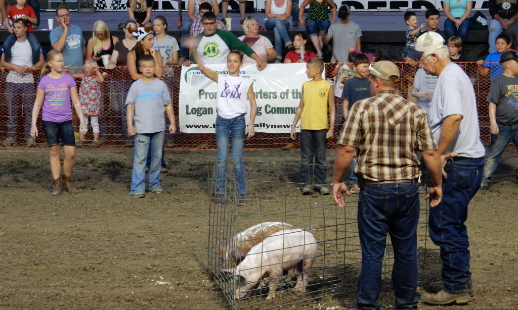 Image: Girl Catches the Greased Pig
