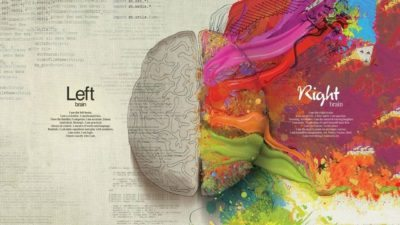 Image: Right brain and Left Brain image from Jill Bolte Taylor's Stroke of Insight TED talk