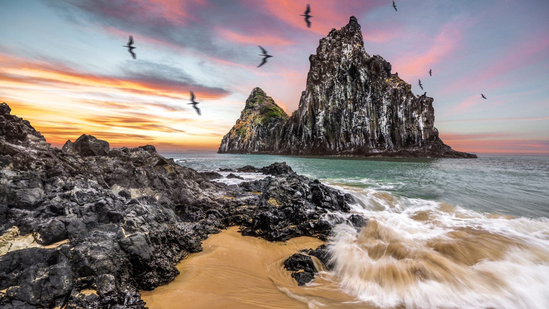 Image: Sea Birds Swirl around a beach overlooking a rocky outcrop