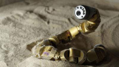 Image: robot snake slithering in sand