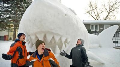 Image: Shark sculpture made of snow