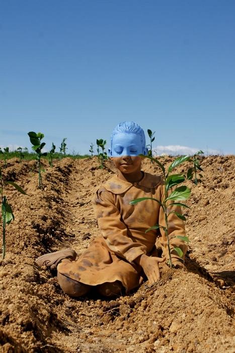 Image: Stoetter's Soil