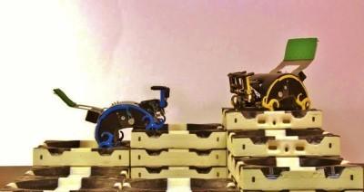 Image: Self-organizing robots