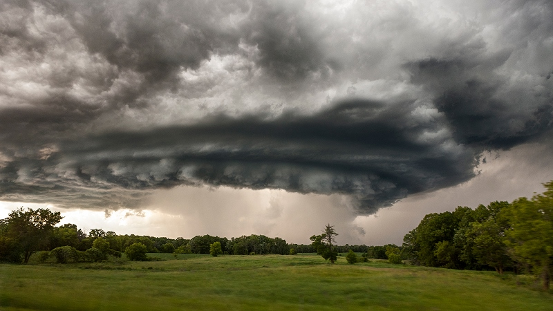 Image: storm looming over green forested meadow