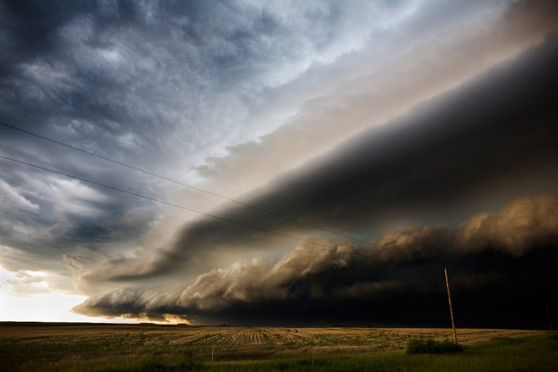 Image: Storm over wheat field