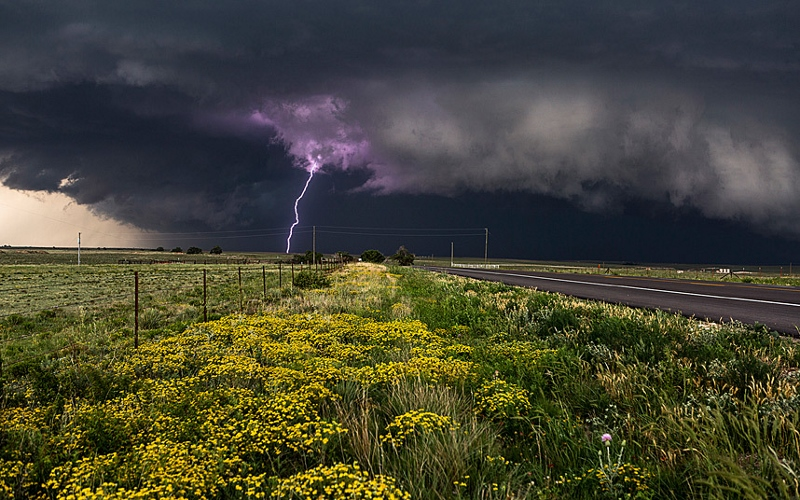 Image: Purple Lightning