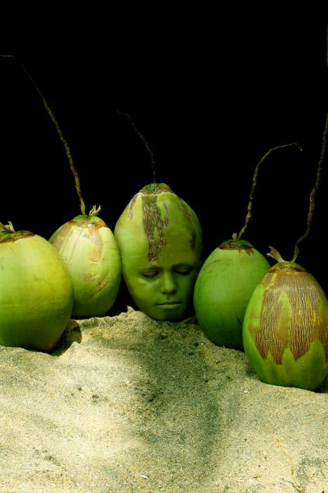 Image: Stoetter Cocconuts