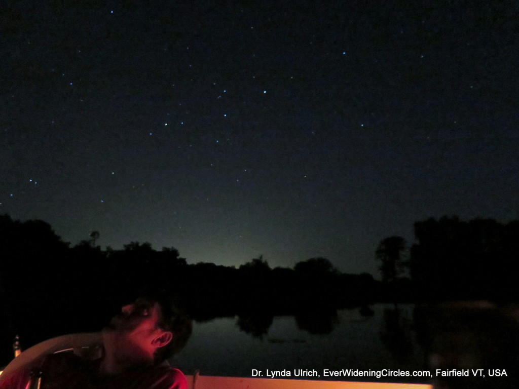 Image: Gazing at meteor shower