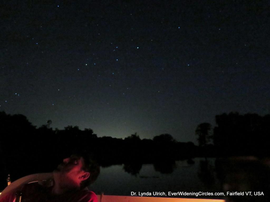 Image: Gazing at meteor shower