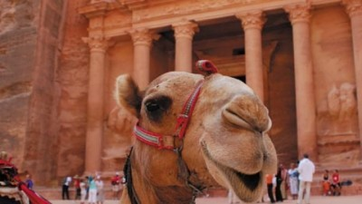Image: Camel stands before Petra