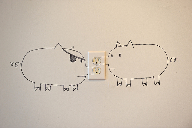 Image: Electrical sockets painted to look like Pig Noses. Brock Davis Photography