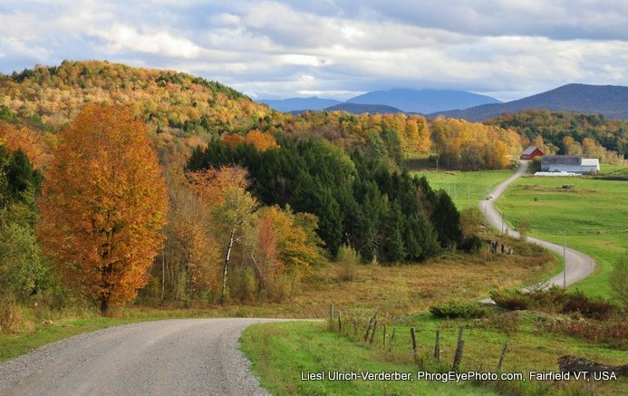 Image: Winding local road in a Vermont fall landscape
