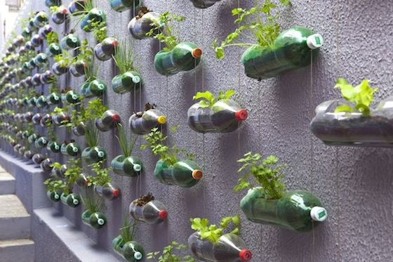 Image: Upcycling Plastic Bottles