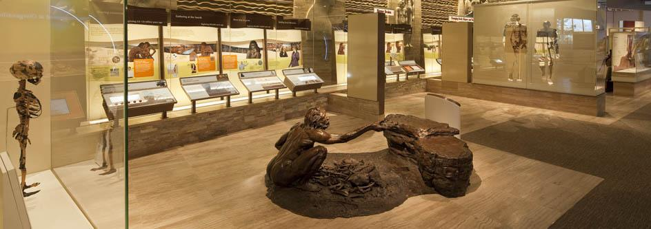 Smithsonian Hall of Human Origins