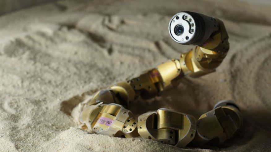 Snake Robots: Can You Watch This Without Squirming?