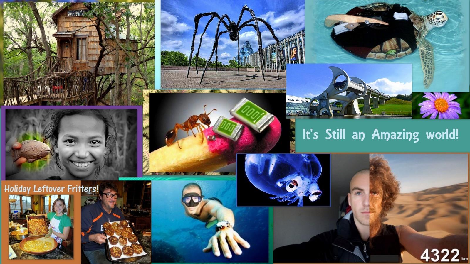 Image: EWC Photo collage It's still an amazing World