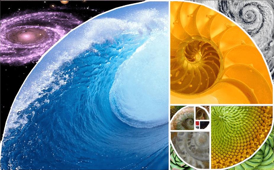 Mathemagic Fibonacci Art