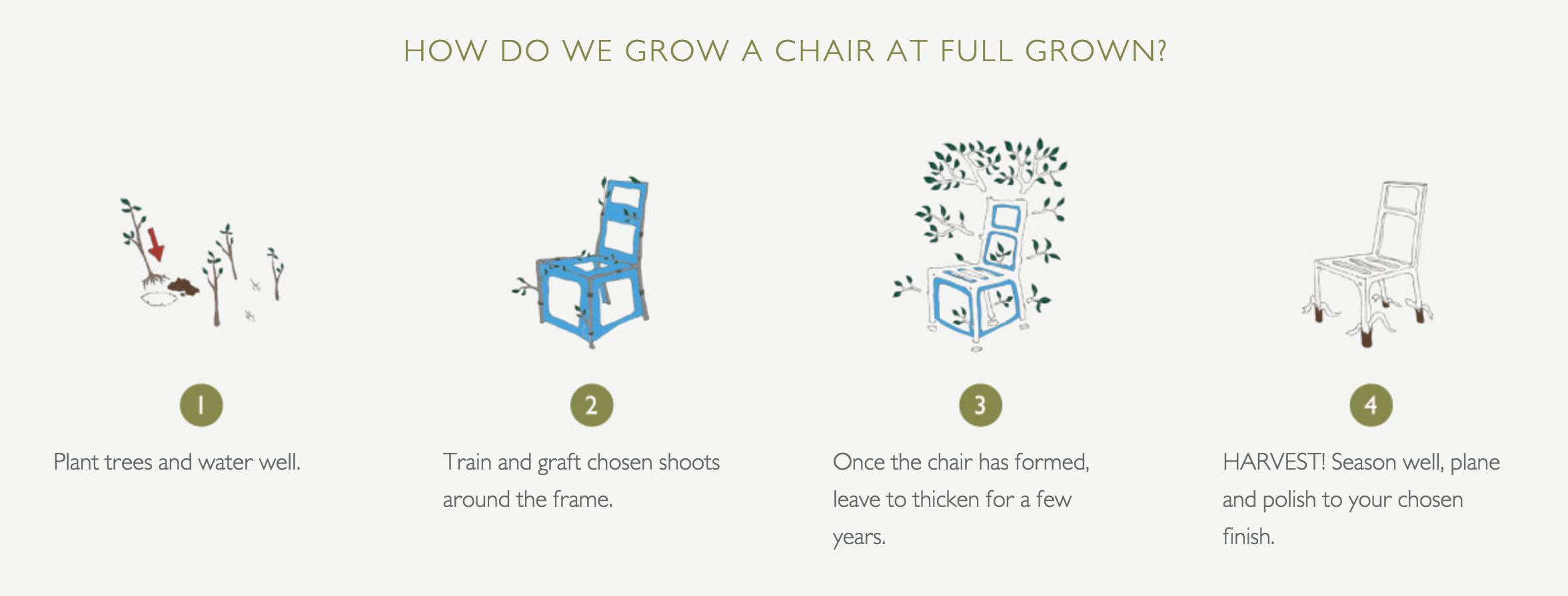 Full Grown Furniture Process