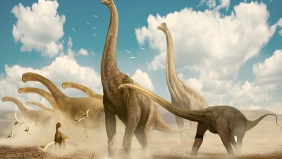diplodocus-camarasaurus-brachiosaurus-jan-sovak
