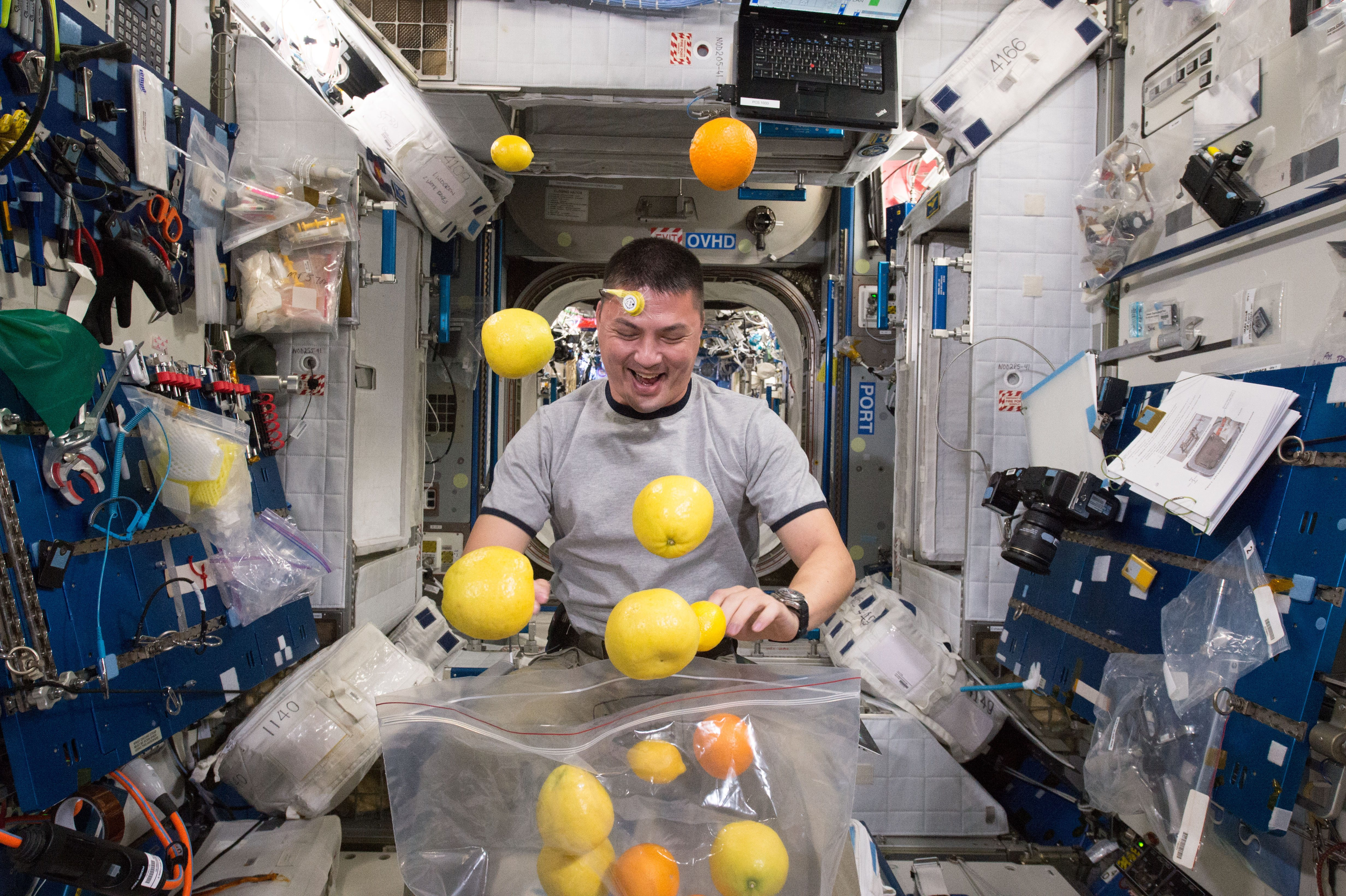 Astronaut's Perspective: Astronaut opening a bag of citrus in space