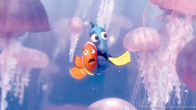 Finding nemo jellyfish