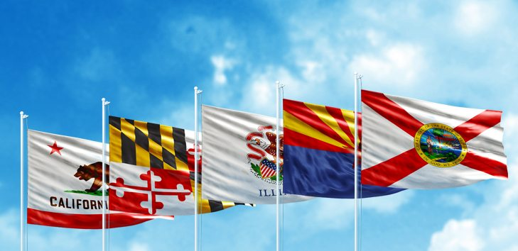 Image: State flags blowing in the breeze