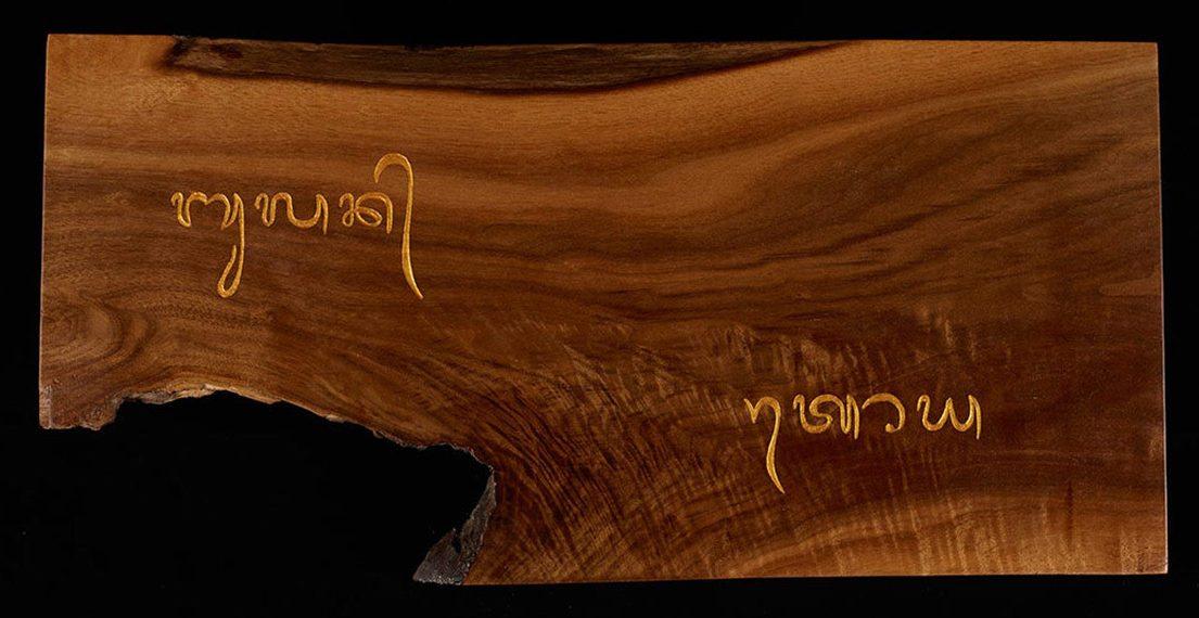 Image: Tim Brookes' Endangered Alphabets