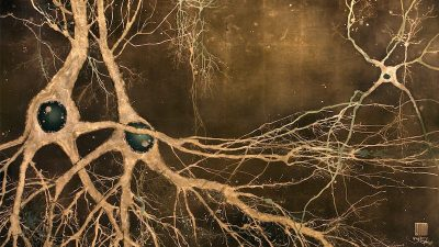 Image: Neuroscience Artist Dr. Greg Dunn's piece Maki-e-neurons. Neurons in gold leaf