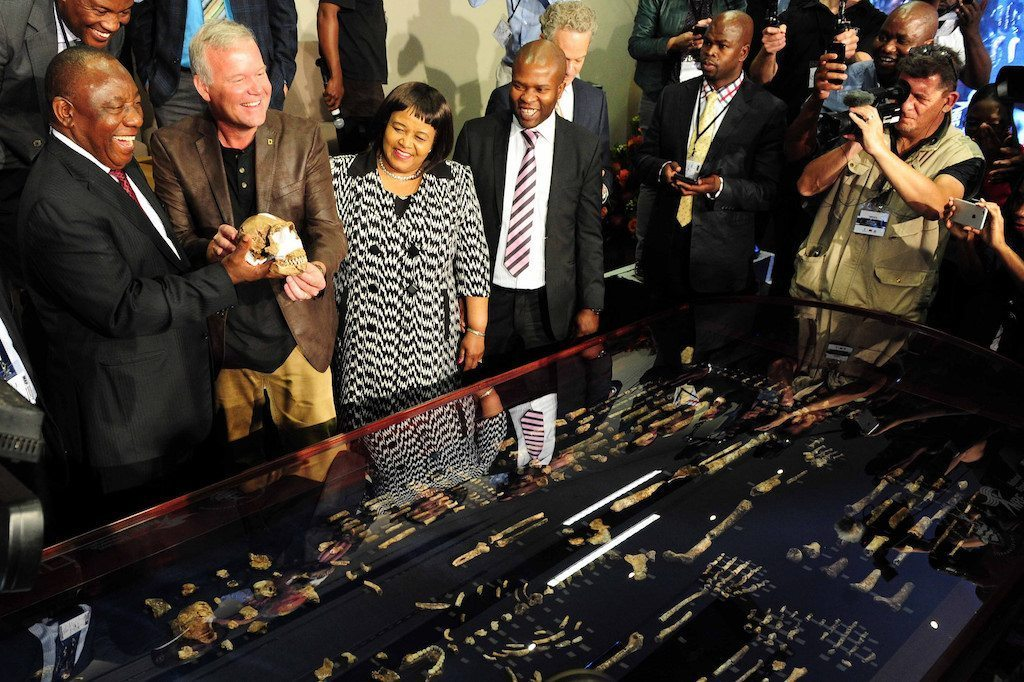 Image: Homo Naledi bones on display