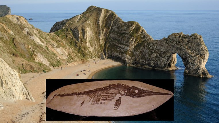 Image: the beach at Lyme Regis, England, Jurassic Coast with an Ichthyosaur skeleton, first discovered by Mary Anning