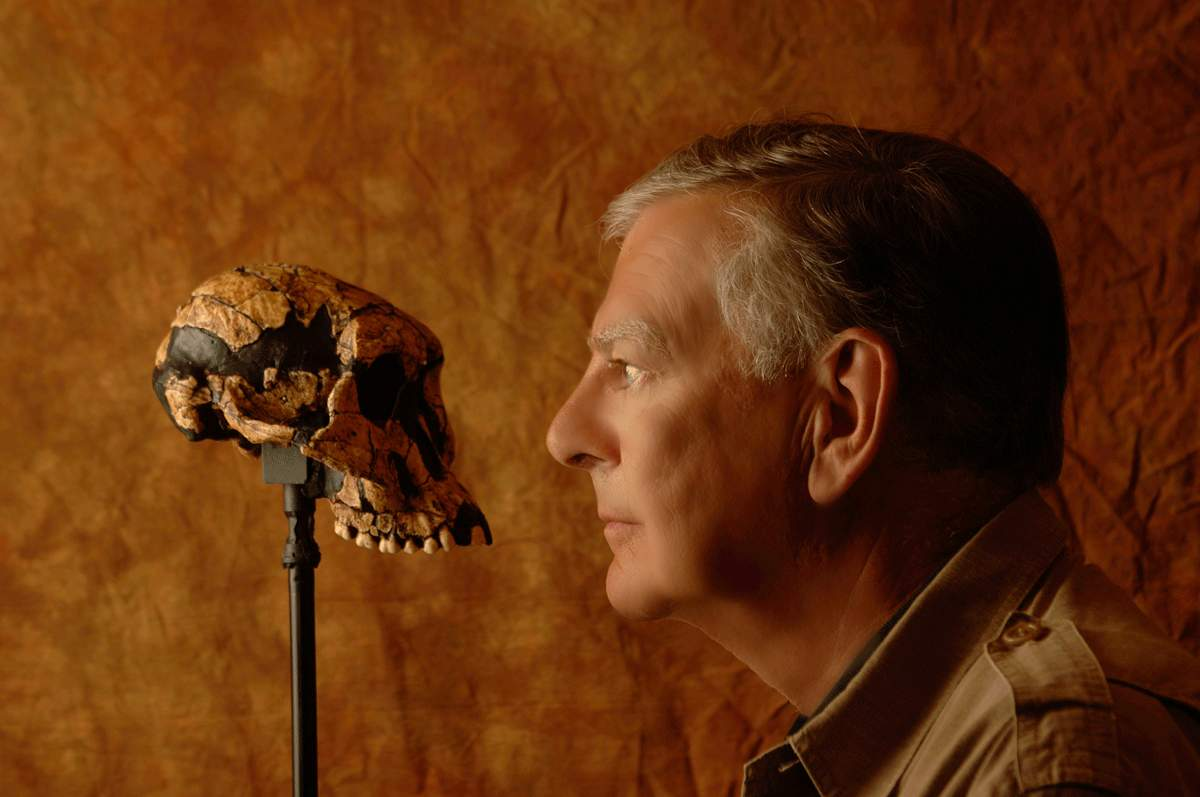 Image: Scientist staring at an early human skull