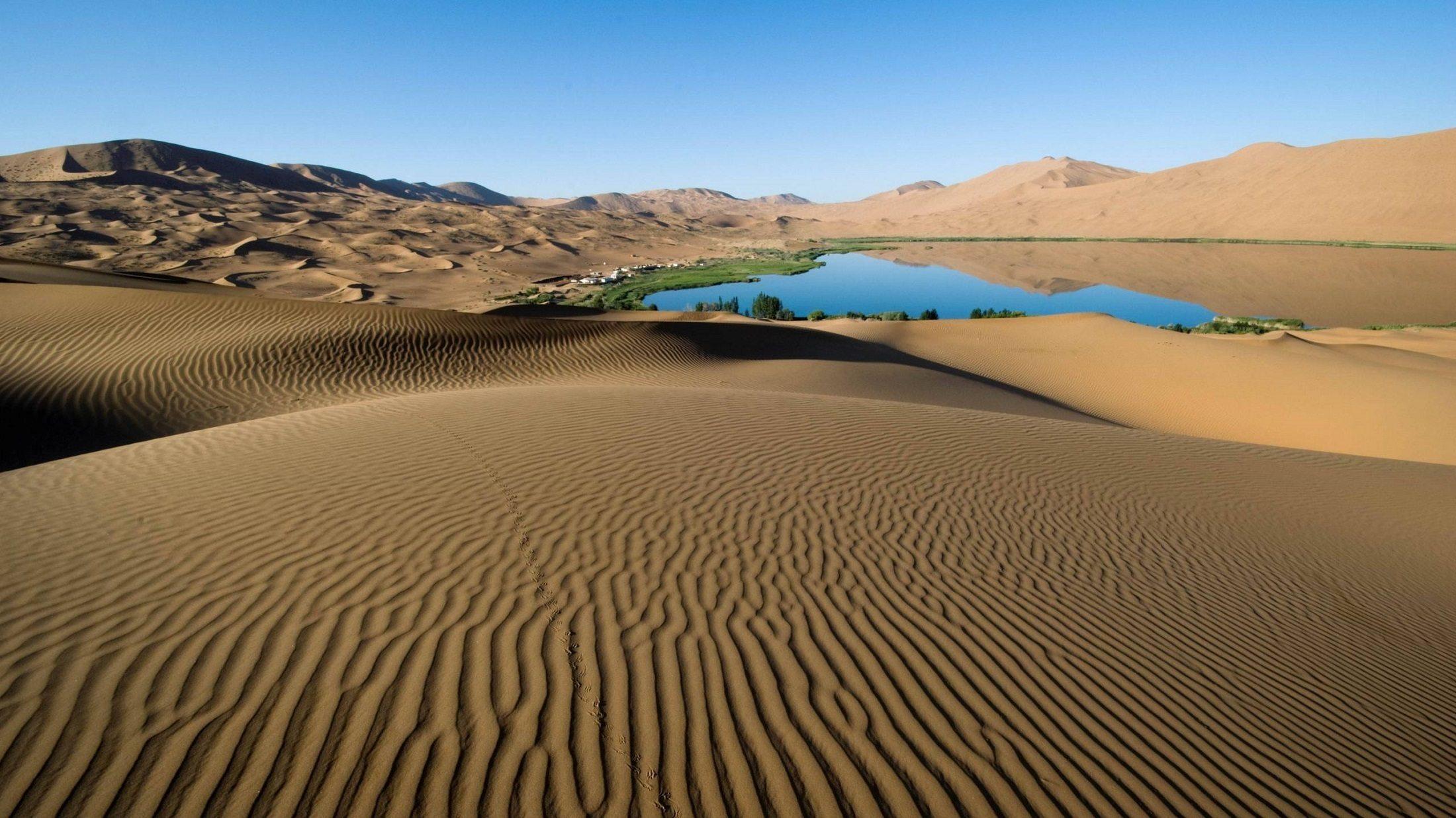 Image:desert paragliding