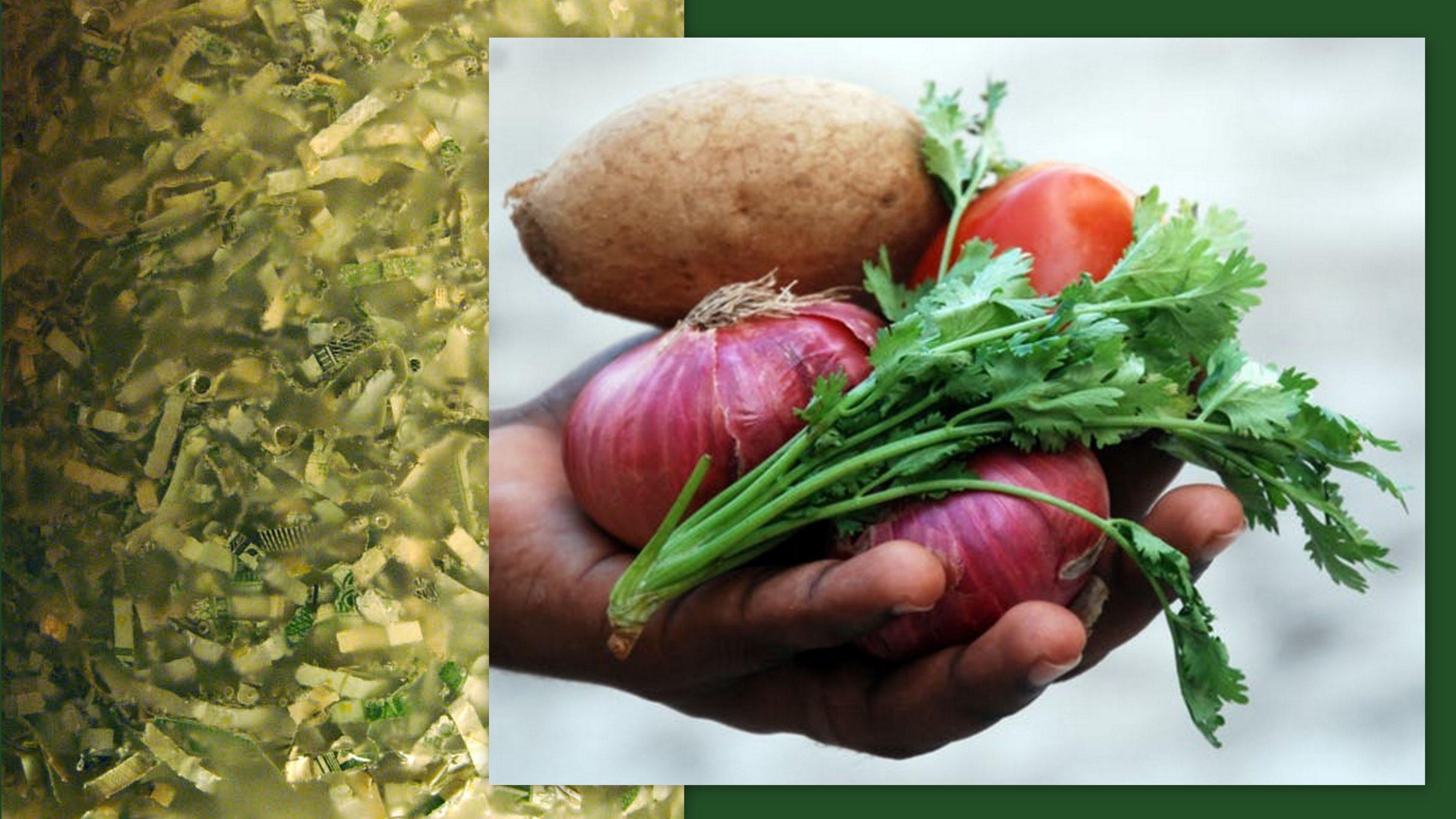 Image: Shredded Cash and handful of fresh vegetables