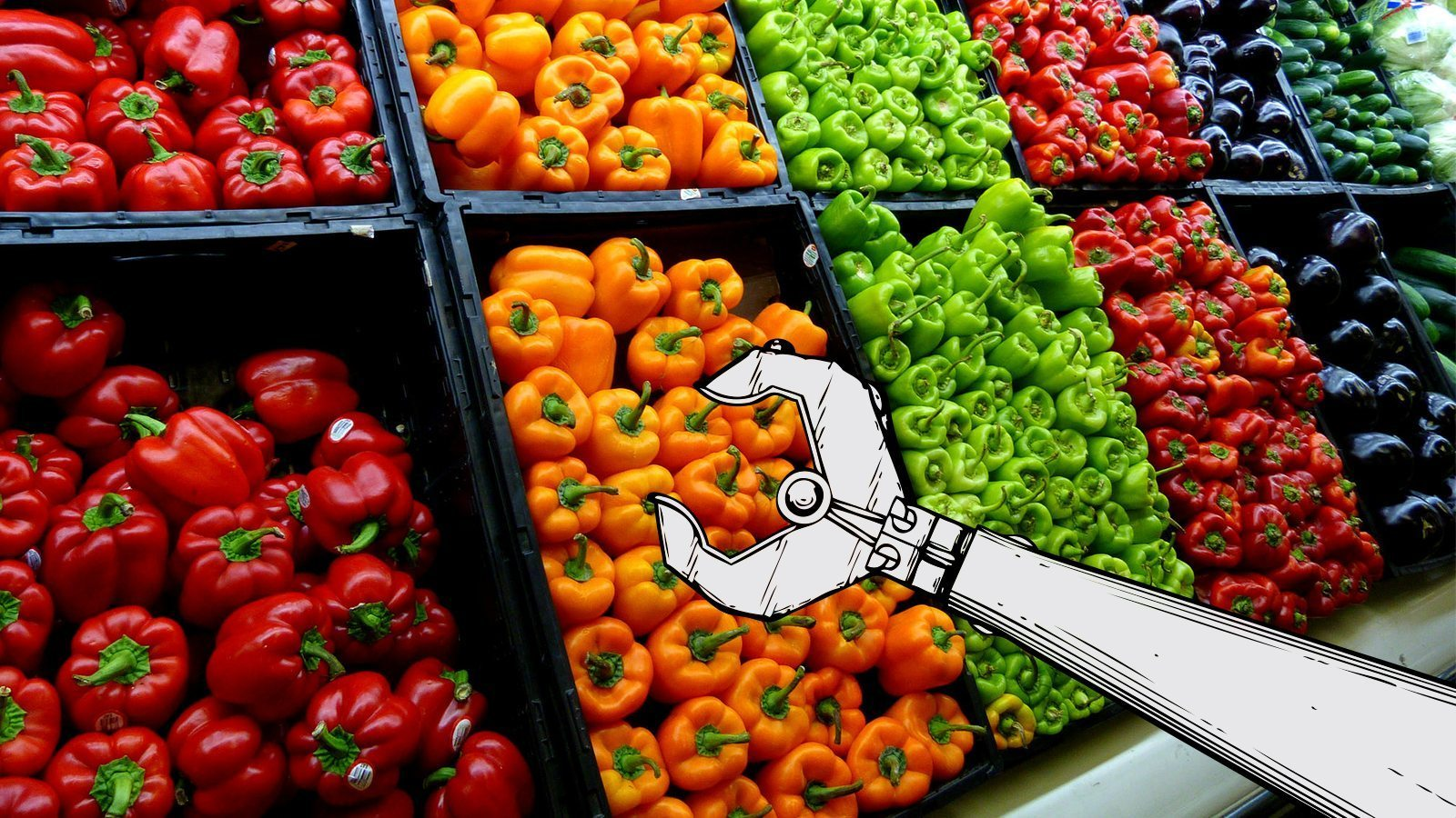 Image: Illustration of an agricultural robot arm reaching for peppers in the produce aisle.