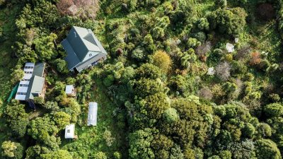 Image: Aerial View of Forest Garden
