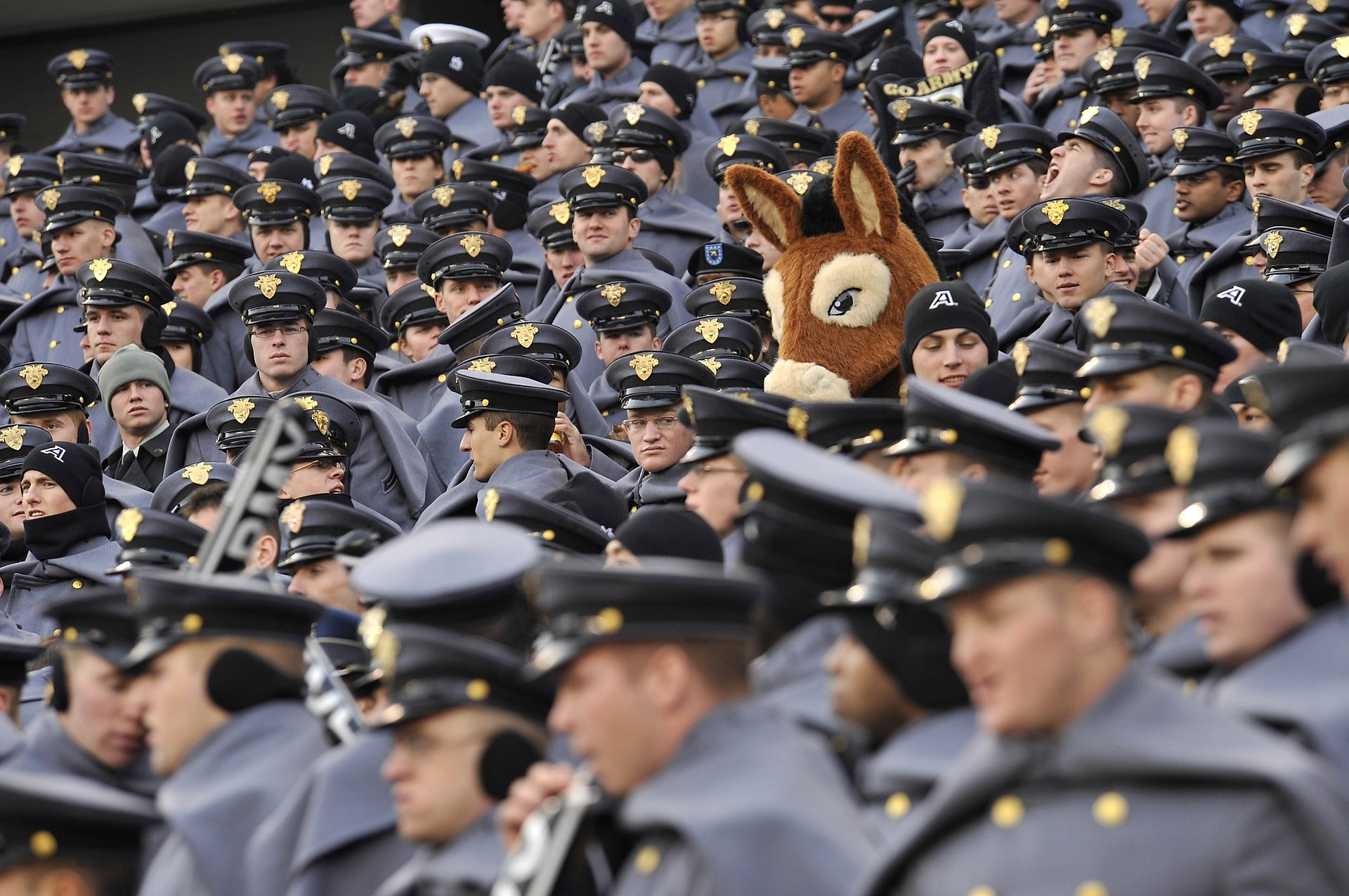 Image: Person in donkey mask stands out in crowd of cadets in uniform