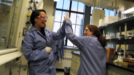 Image: Two people highfiving in a laboratory