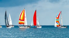 Image: Colorful Sailboats on the Ocean