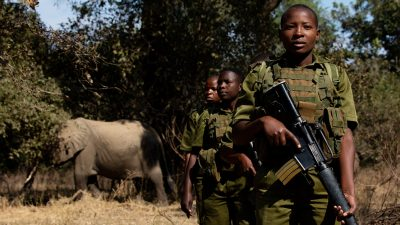 Image: Women Rangers are training to guard elephants from poachers