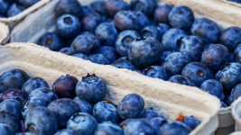 Image: Baskets of blueberries