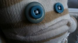 Image: Button eyes of a sock monster