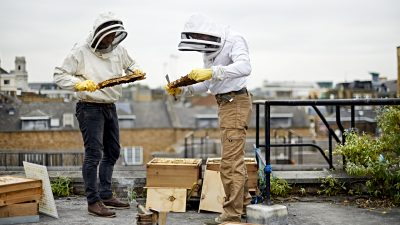 Image: Beekeepers on a rooftop in London, England