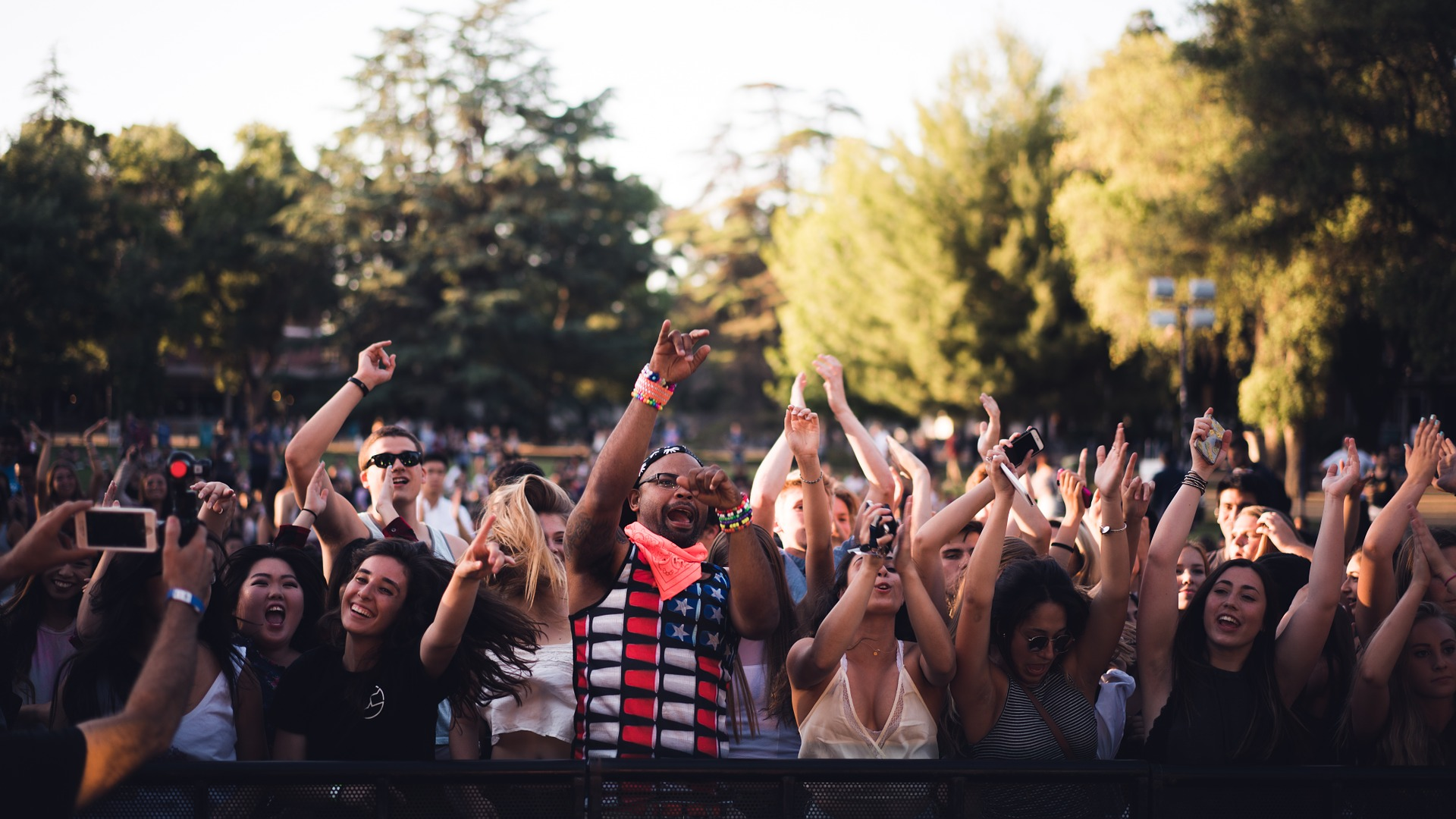Image: People in a crowd dancing at a concert