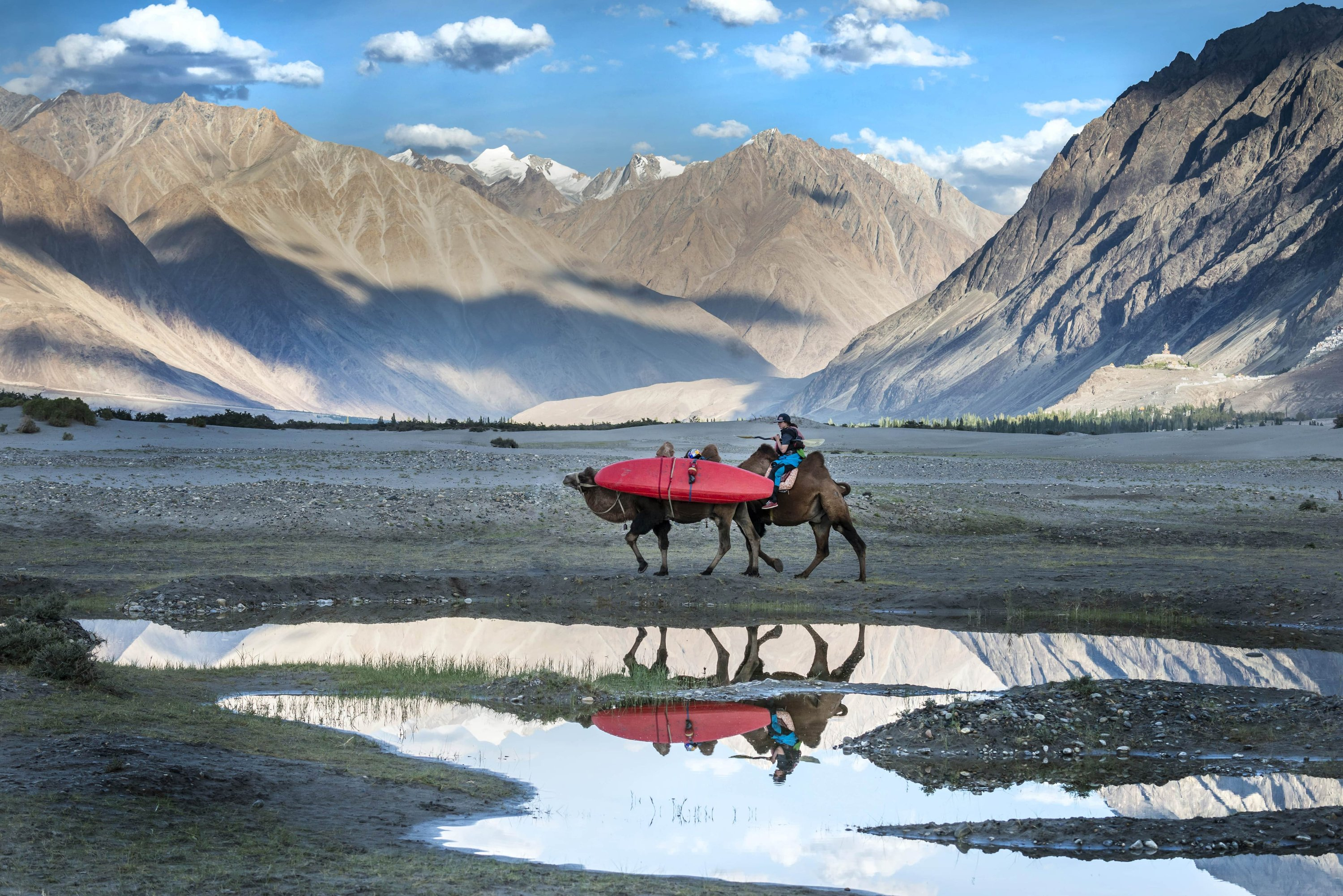 Image: Nouria Newman riding a camel through a valley in Ladakh with another camel carrying her kayak