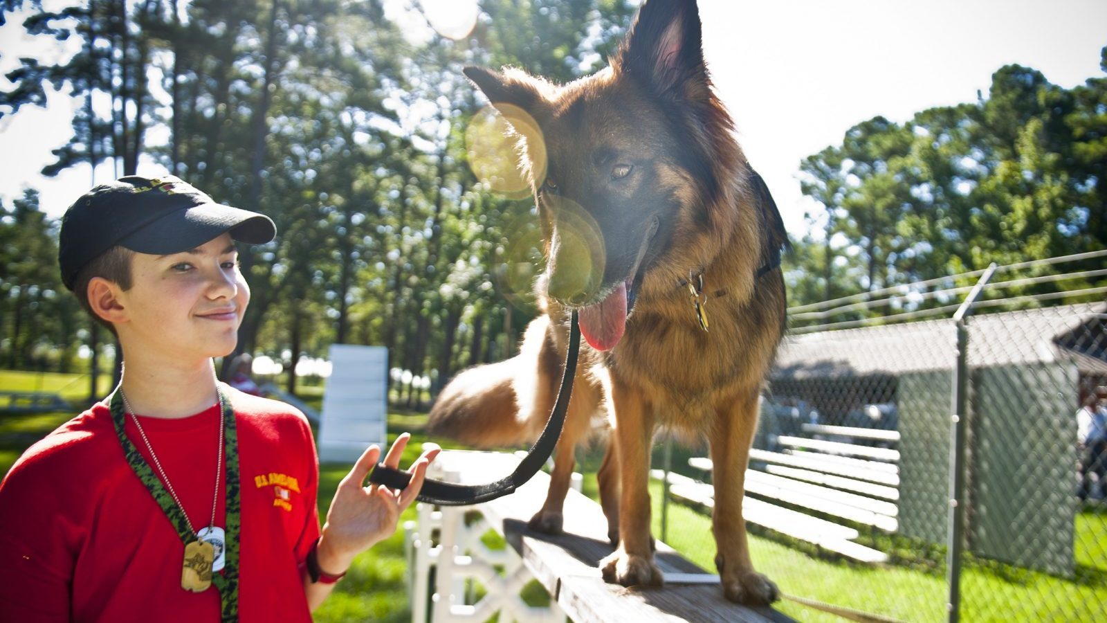 Image: a boy and his seizure response dog train together