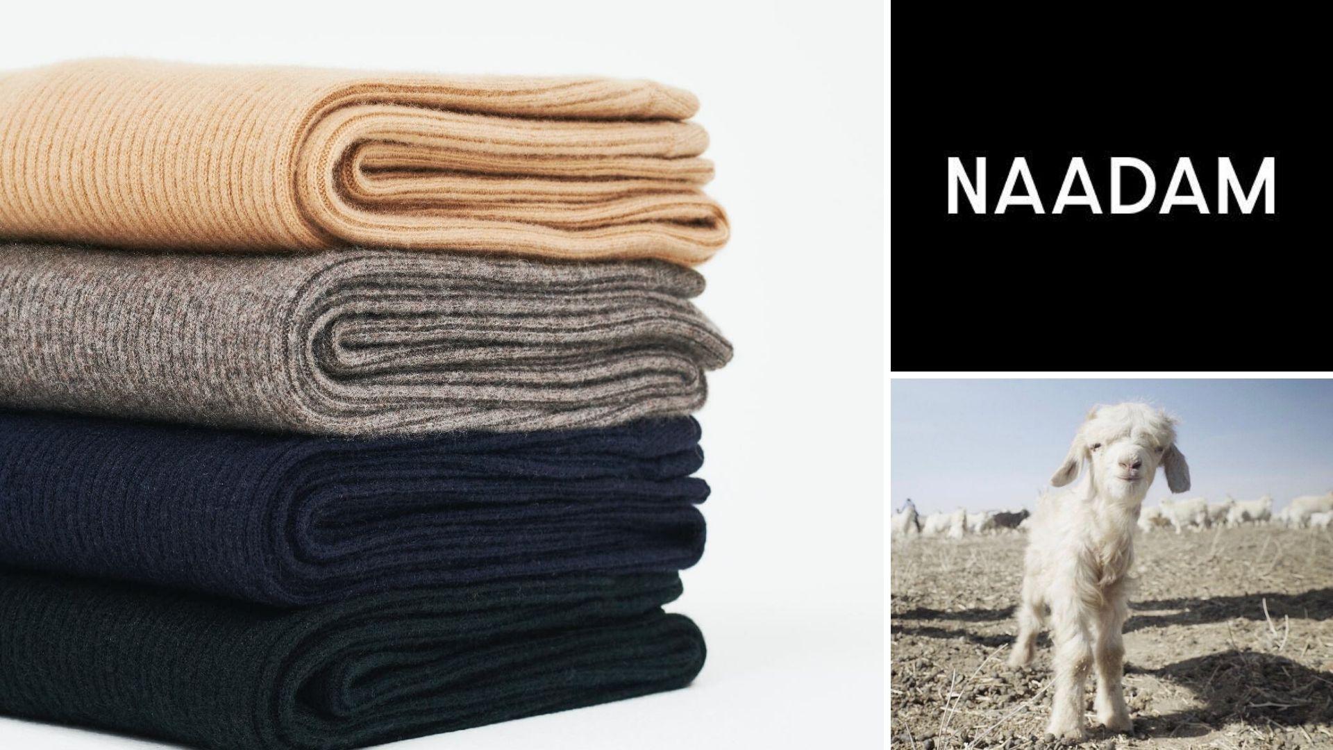 Image: folded cashmere, cashmere baby goat