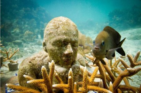 Image: fish next to submerged statue