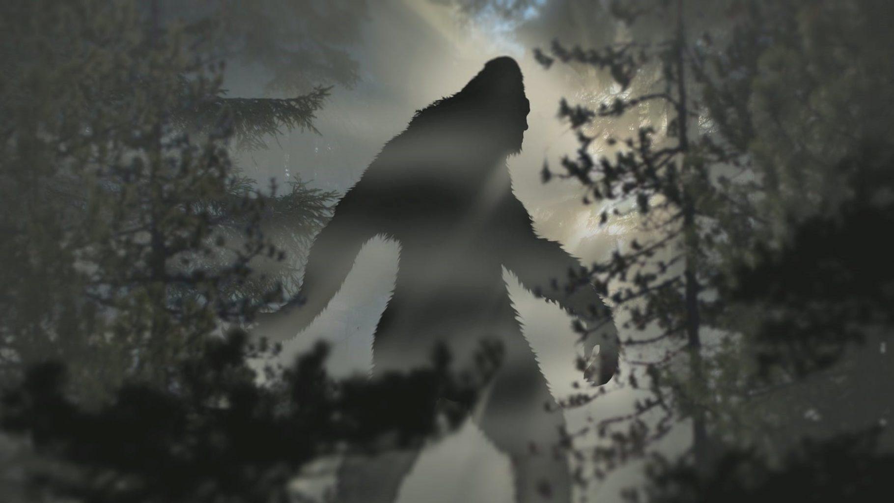Image: silhouette of bigfoot