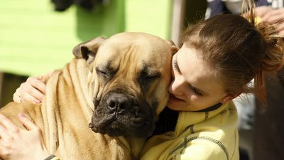 Image: Woman hugs large dog with a smile on his face